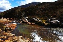 Dal för vattenpöl i den skotska Skotska högländerna Royaltyfria Foton
