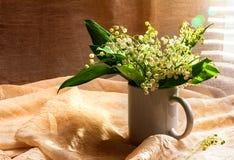 Dal för vit lilja för stillebenbukett Royaltyfri Bild