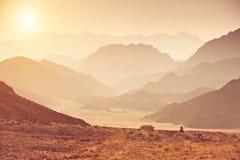 Dal i den Sinai öknen med berg och solen Arkivfoton