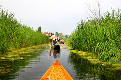 Dal lake Stock Photo