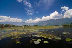 Dal Lake Royaltyfri Foto