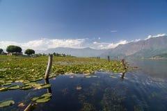 Dal Lake Royalty-vrije Stock Afbeelding