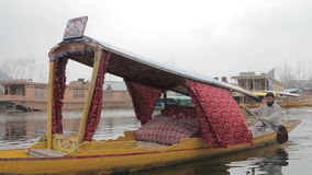 Dal Lake stock videobeelden