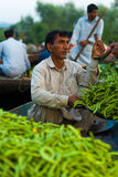 Dal Lake Floating Market Weighing Vegetables Boat Stock Image