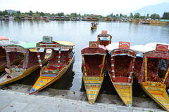 Dal Lake - India Royalty-vrije Stock Foto