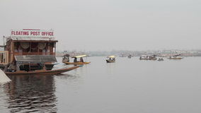 Dal Lake stock video