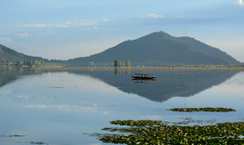 Dal lake with the park in Srinagar, India. A boat on Dal lake in Srinagar, India royalty free stock photography