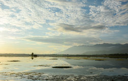 Dal lake with the park in Srinagar, India stock images