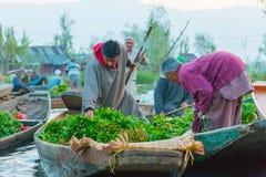 Dal Lake som svävar marknaden i Srinagar, Kashmir Royaltyfria Bilder