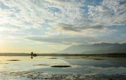 Dal meer met het park in Srinagar, India stock afbeeldingen
