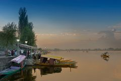 Dal meer - Srinagar, J&K, India Stock Foto's