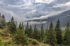 Dal på den molniga sommarmorgonen Arkivfoto