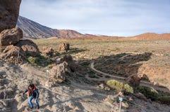 Dal på foten av den Teide vulkan arkivbild