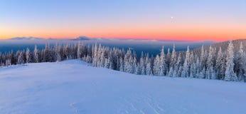 Dal prato inglese, coperto di neve, una vista panoramica del coperto di alberi del gelo, nebbia, montagne alte e ripide immagine stock libera da diritti