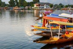 Dal sjö på Srinagar, Kashmir, Indien Fotografering för Bildbyråer