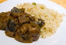 Dal y arroz picantes imagen de archivo libre de regalías