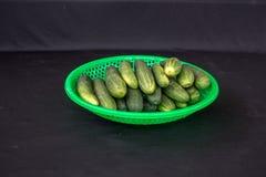 Dalat- cucumber fruits on green plastic basket Stock Photography