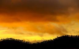 Dalat-Landschaft im Sonnenuntergang mit Reihe des Baums Lizenzfreies Stockfoto