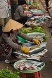 Dalat, uliczna stopa, miejscowego rybi andvegetable rynek w Vietnam Fotografia Royalty Free