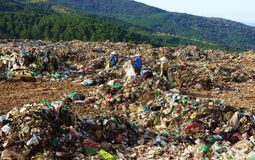 People pick up garbage at dumping ground. DALAT, V Royalty Free Stock Photography