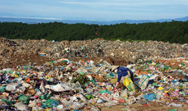 People pick up garbage at dumping ground. DALAT, V Royalty Free Stock Photos