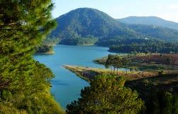 Dalat, Vietnam, eco travel, pine forest, Da Lat Royalty Free Stock Image