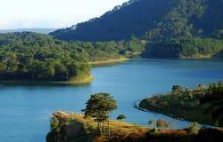 Dalat, Vietnam, eco travel, pine forest, Da Lat Royalty Free Stock Images