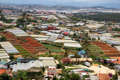 Dalat - Vietnam - Urban growth versus agriculture Royalty Free Stock Images