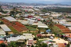 Dalat - Vietnam - Urban growth versus agriculture Royalty Free Stock Images