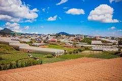 DALAT, VIETNAME - 17 de fevereiro de 2017 Vista para a cidade e o monte do Lat da Dinamarca em Vietname Foto de Stock Royalty Free