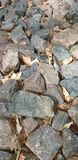 Various coloured stone laying Dalbeattie forest Kirkcudbrightshire stock photography
