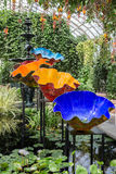 Dale Chihuly. BRONX, NY, USA - JUNE 9, 2017: NY BOTANICAL GARDEN. Dale Chihuly`s art exhibition displayed at NYBG. Shown here is Macchia Forest displayed inside stock photos