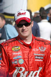 Dale Earnhardt JR stock images