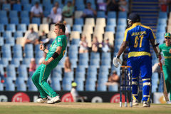 Dale Steyn South African Bowler Royalty Free Stock Images
