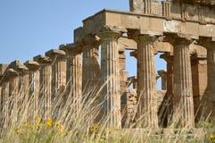 Dalen av templen av Agrigento - Italien 019 Arkivbilder