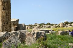 Dalen av templen av Agrigento - Italien 022 Royaltyfria Foton