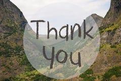 Dalen och berget, Norge, text tackar dig Fotografering för Bildbyråer
