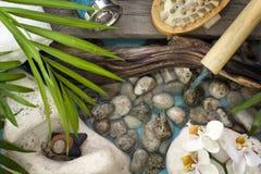 Dalend water op stones spa conceptenachtergrond Stock Afbeeldingen