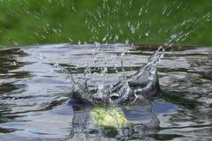 Dalende appel in water met een plons stock foto