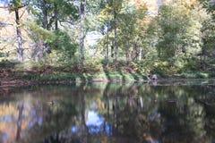 Dalende bladeren natuurlijke achtergrond royalty-vrije stock foto
