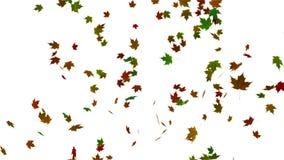 Dalende bladerenanimatie als achtergrond stock illustratie