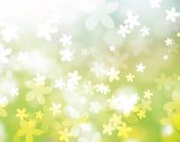 Dalende bloem Stock Foto's