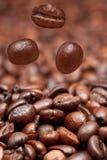 Dalende bonen en donkere geroosterde koffie Royalty-vrije Stock Afbeeldingen