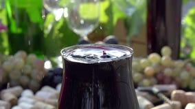 Dalende Dalingen van Rode Wijn stock video