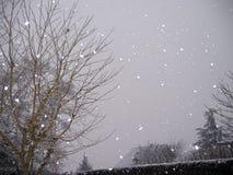 Dalende sneeuw royalty-vrije stock afbeeldingen