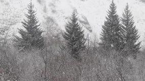 Dalende sneeuw tegen de achtergrond van het bos en de bergen stock videobeelden