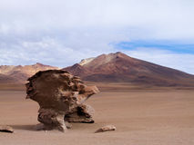 Dali desert. Arbol de Piedra (tree of rock) in de Dali Desert, Bolivia royalty free stock images