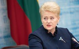 dalia grybauskaite立陶宛总统 免版税库存照片