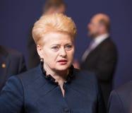 Dalia Grybauskaite. BRUSSELS, BELGIUM - Feb 12, 2015: Lithuanian President Dalia Grybauskaite at the informal EU summit in Brussels (Belgium Royalty Free Stock Photo