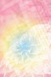 Dalia rosada en jardín Foto de archivo libre de regalías